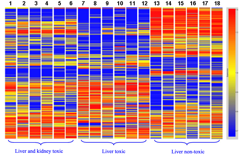 Heat map of human cell proteome treated with 3 groups of drugs of different toxicity: data collected from 2D DIGE protein array