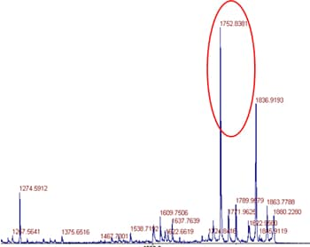 De Novo Peptide Sequencing Procedure: step 1: MS showing the targeted mass peak of a known peptide