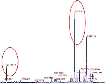 De Novo Peptide Sequencing Procedure: step 2: MS showing the targeted mass peak of an un-known peptide